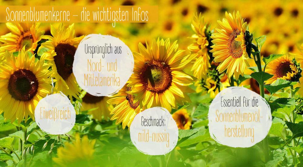 Sonnenblumenkerne-e1500738700579