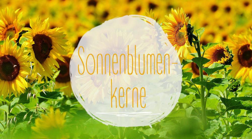 Titel_Sonnenblumenkerne-e1500738664859